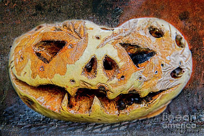Photograph - Jack-o-lantern by David Arment