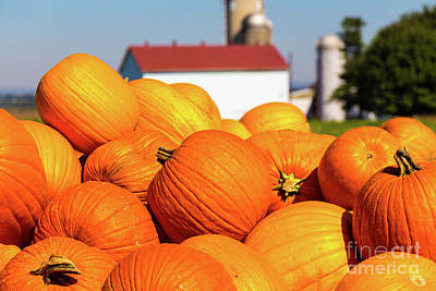 Jack-o-lantern Pumpkins At Farm Art Print