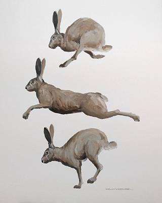 Jack Rabbits Original