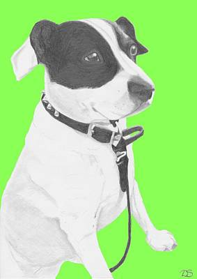 Pet Drawing - Jack Russell Cross With Green Background by David Smith