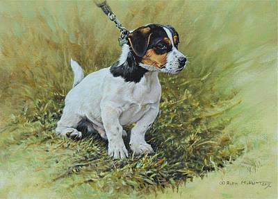 Painting - Jack Russell Portrait by Alan M Hunt