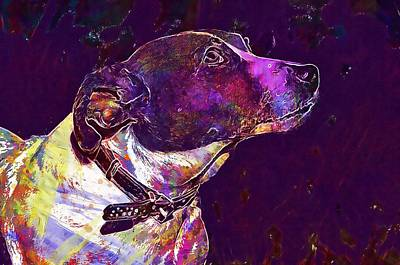 Digital Art - Jack Russell Terrier Dog Animal  by PixBreak Art