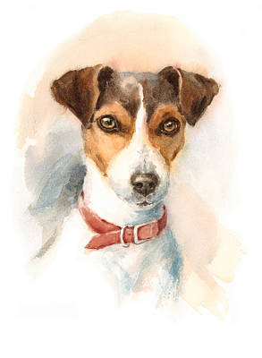 Recently Sold - Animals Royalty-Free and Rights-Managed Images - Jack Russell Terrier by Maria Stezhko