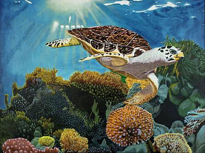 Jack The Sea Turtle Original