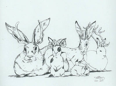 Drawing - Jackalopes by InKibus