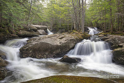 Photograph - Jackman Falls - Woodstock New Hampshire by Erin Paul Donovan