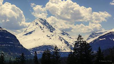 Photograph - Jackson Glacier by Tracey Vivar