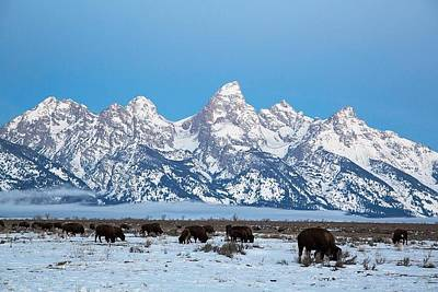 Photograph - Jackson Hole The Grand Tetons by Shawn Hughes
