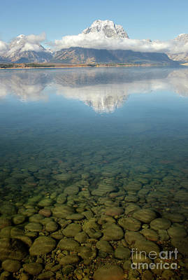 Rocky Mountain Photograph - Jackson Lake Shore by Wildlife Fine Art
