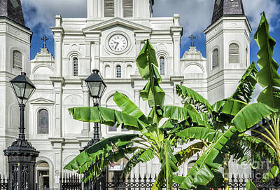 Photograph - Jackson Square - Cathedral And Banana Trees by Kathleen K Parker
