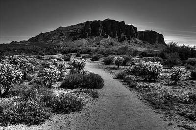 Photograph - Jacobs Crosscut Trail In The Superstition Wilderness by Roger Passman