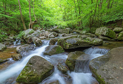 Photograph - Jacobs Fork River Cascades In South Mountain  by Ranjay Mitra