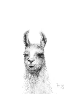 Llama Wall Art - Drawing - Jacquie by K Llamas