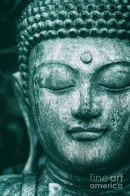 Photograph - Jade Buddha by Tim Gainey
