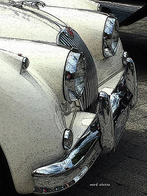 Photograph - Jag by Mark Alesse