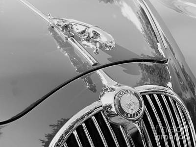 Photograph - Jaguar 3.8 Litre by Neil Zimmerman