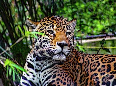 Mixed Media - Jaguar At Peace by Bill And Deb Hayes