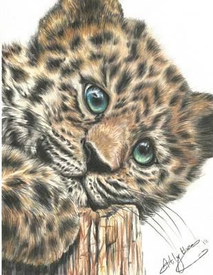 Drawing - Jaguar Cub by Art By Three Sarah Rebekah Rachel White