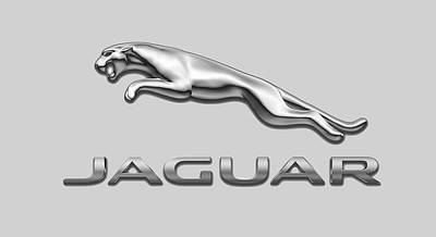 Digital Art - Jaguar by Ericamaxine Price