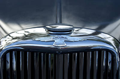 Hoodie Photograph - Jaguar Hood Ornament by Jill Reger