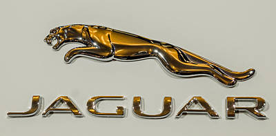Wall Art - Photograph - Jaguar by Michel Emery