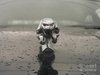 Splashing Etc Photograph - Jaguar   # by Rob Luzier