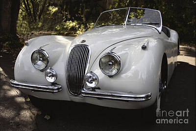 Photograph - Jaguar Xk-120 by Curt Johnson