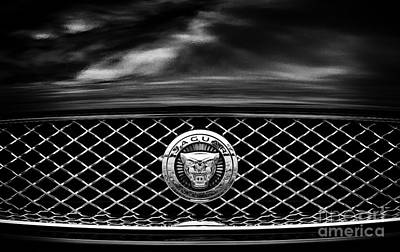 Jaguar Xk Art Print by Tim Gainey