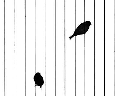 Photograph - Jail Birds by Lauri Novak