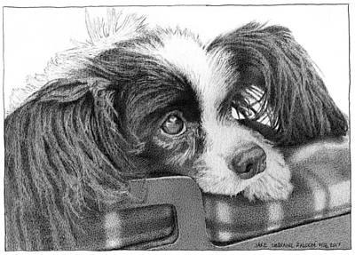 Puppy Drawing - Jake by Lorraine Zaloom