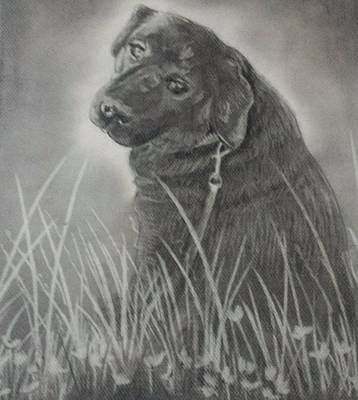 Jake The Dog Art Print