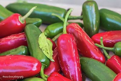 Photograph - Jalapeno Peppers by Nance Larson