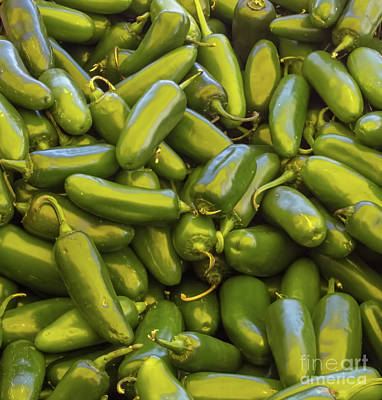 Photograph - Jalapeno Peppers by Steven Parker
