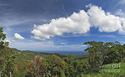 Jamaican Coastal Panorama Art Print by Charles Kozierok