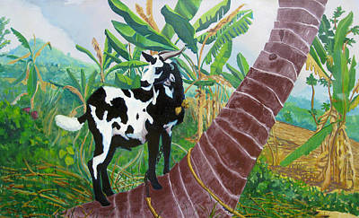 Jamaican Goat In A Tree Art Print by D T LaVercombe