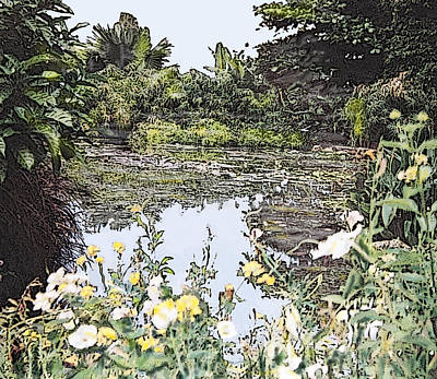 Photograph - Jamaican Pond by Ian MacDonald
