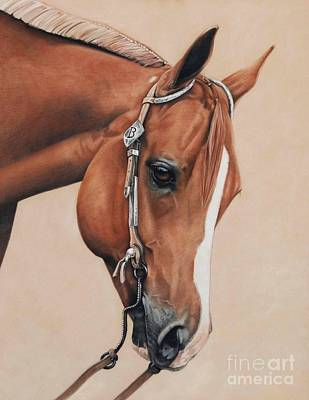 Sorrel Horse Pastel - James by Joni Beinborn