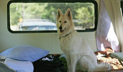 Photograph - Jane Riding In The Bus Camping At Cape Lookout by Margaret Hood