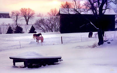 Photograph - January At Jackson's by Sam Davis Johnson