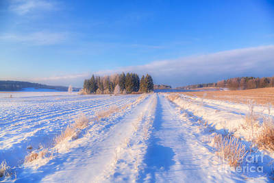Hoarfrost Wall Art - Photograph - January Day 3 by Veikko Suikkanen