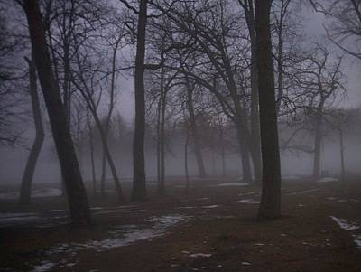 Etherial Photograph - January Fog 2 by Anita Burgermeister