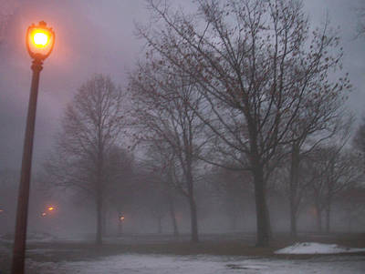 Etherial Photograph - January Fog 3 by Anita Burgermeister