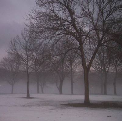 Etherial Photograph - January Fog 4 by Anita Burgermeister