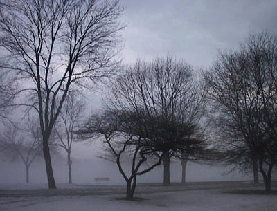 Etherial Photograph - January Fog 6 by Anita Burgermeister