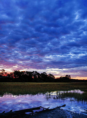 Lowcountry Marshes Photograph - January Morning by Phill Doherty