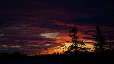 Photograph - January Sunrise by Ellery Russell