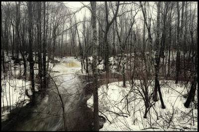 Photograph - January Thaw At Hunter Brook by John Meader