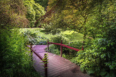 Photograph - Japanese Bridge Over The Stream by Debra and Dave Vanderlaan