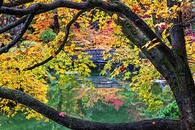 Photograph - Japanese Garden Autumn by Mark Kiver