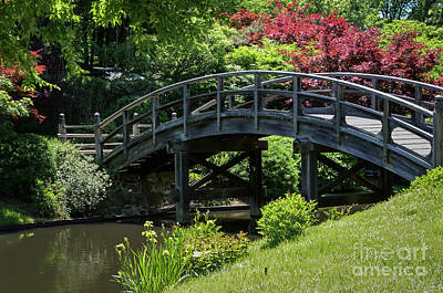 Photograph - Japanese Garden Bridge by Andrea Silies